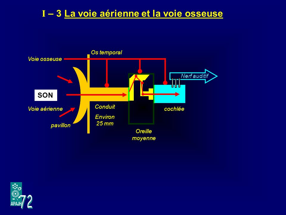 I – 3 La voie aérienne et la voie osseuse