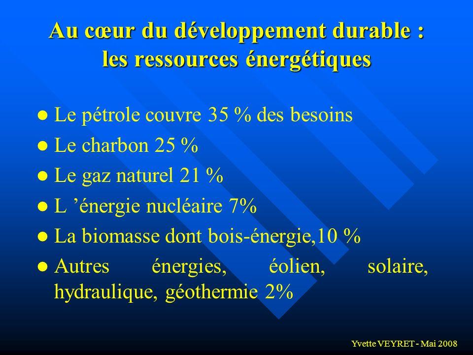 Au cœur du développement durable : les ressources énergétiques
