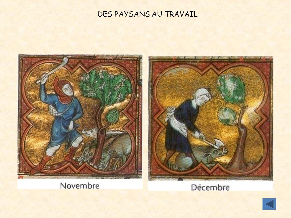 DES PAYSANS AU TRAVAIL