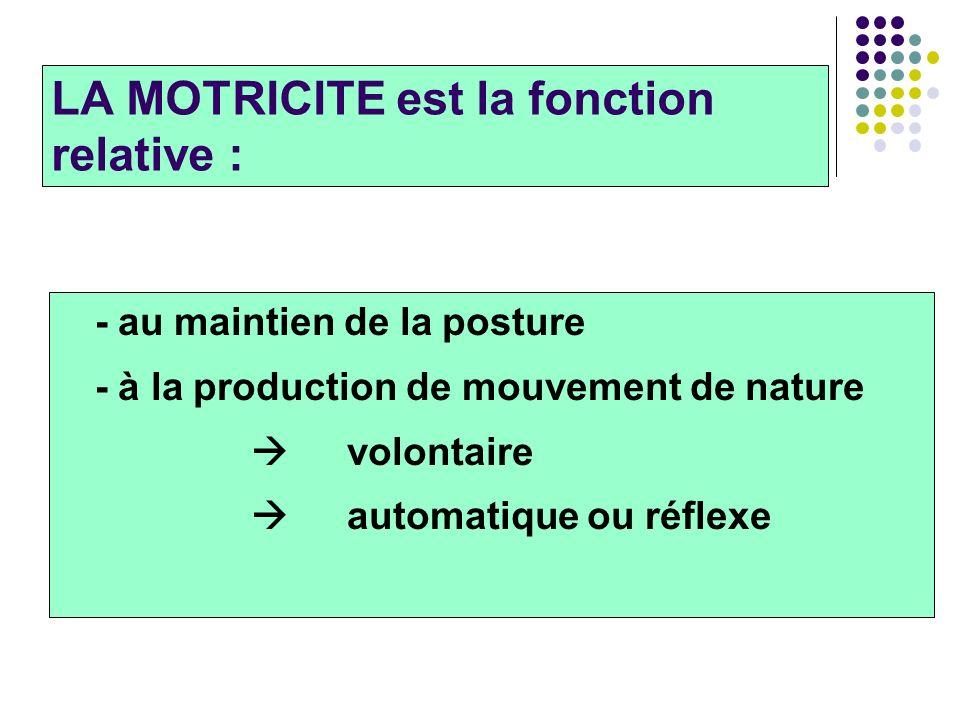 LA MOTRICITE est la fonction relative :
