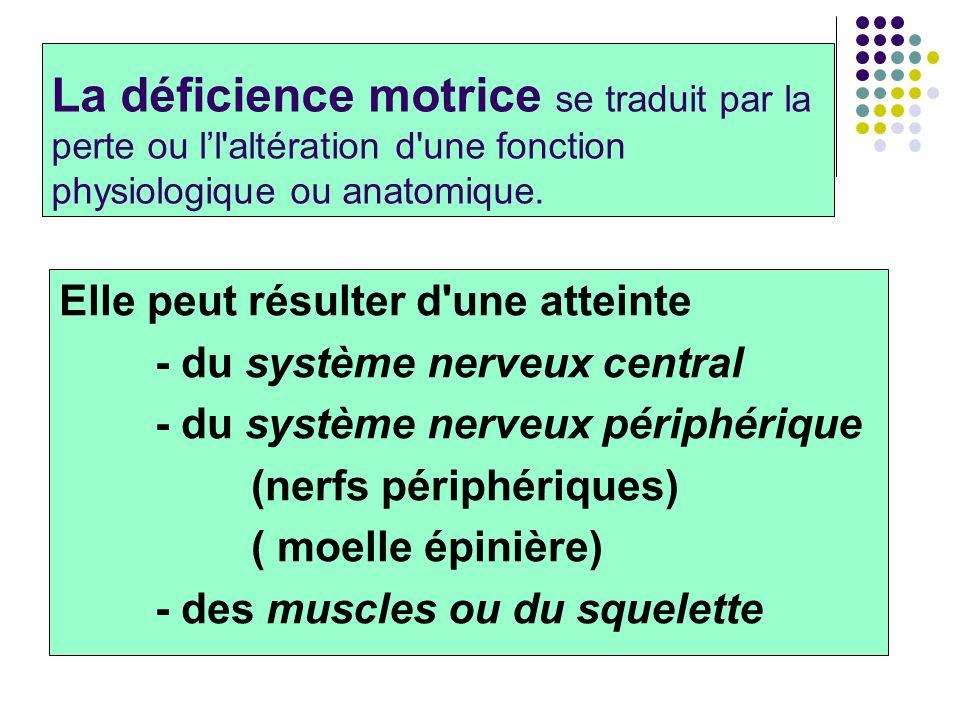 La déficience motrice se traduit par la perte ou l'l altération d une fonction physiologique ou anatomique.
