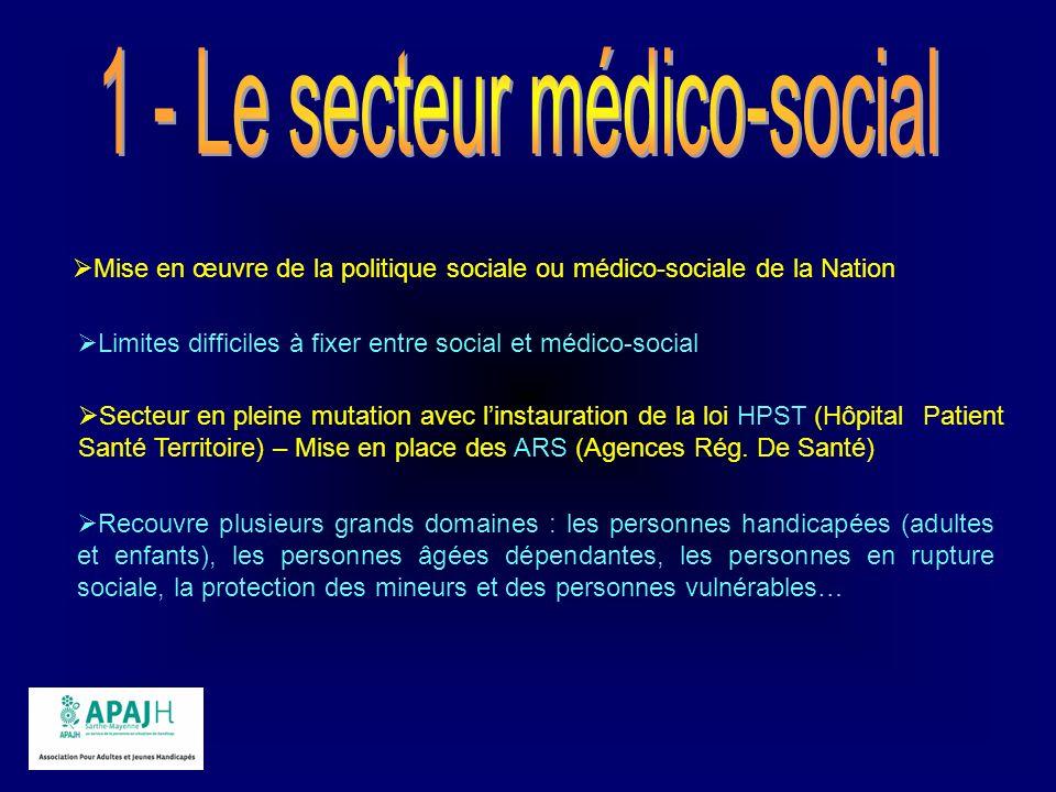 1 - Le secteur médico-social