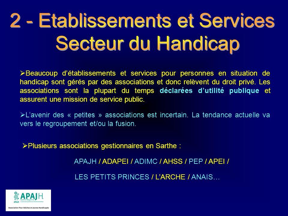2 - Etablissements et Services Secteur du Handicap