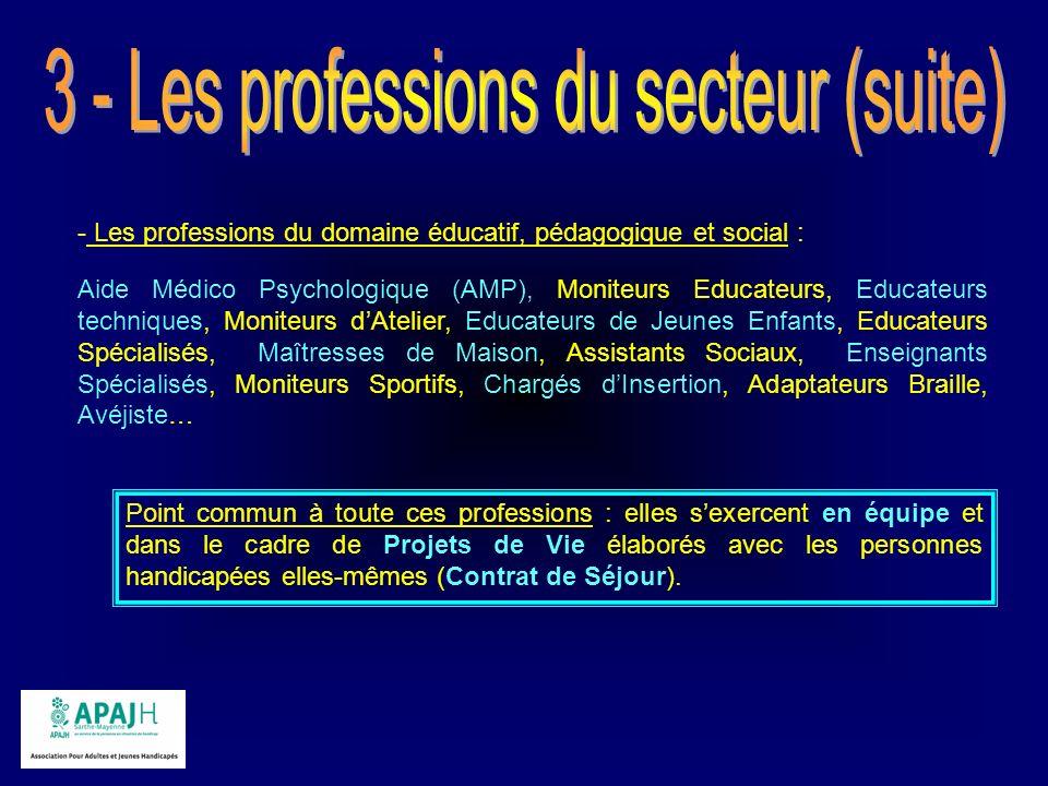 3 - Les professions du secteur (suite)