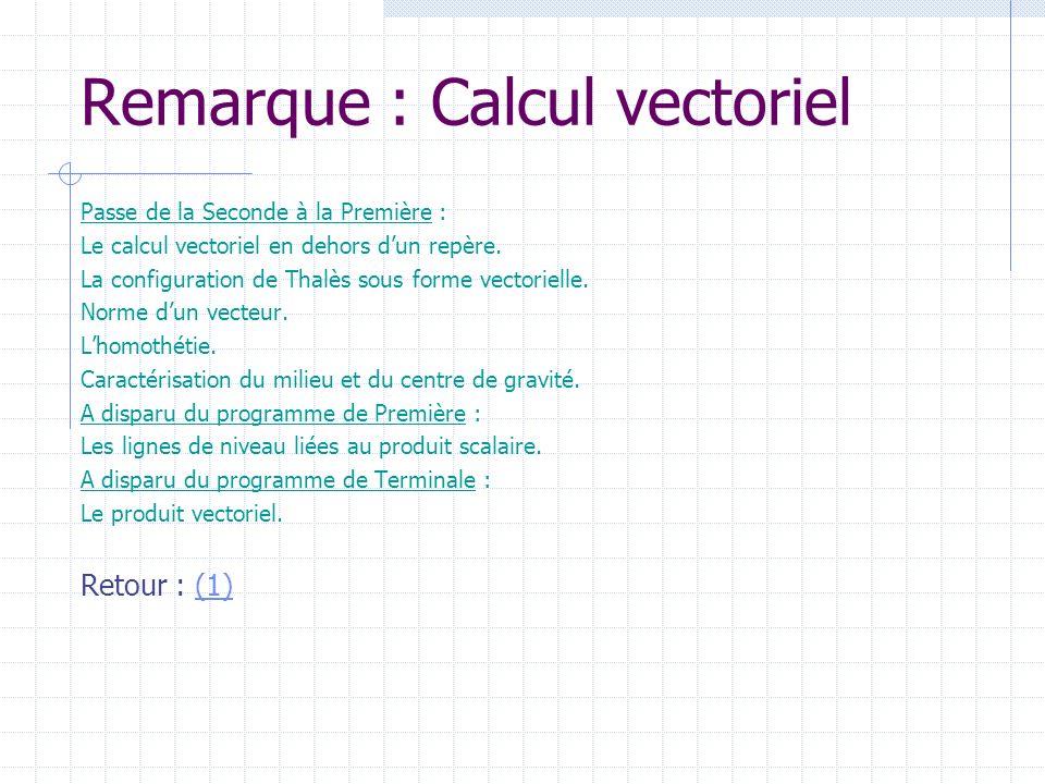 Remarque : Calcul vectoriel