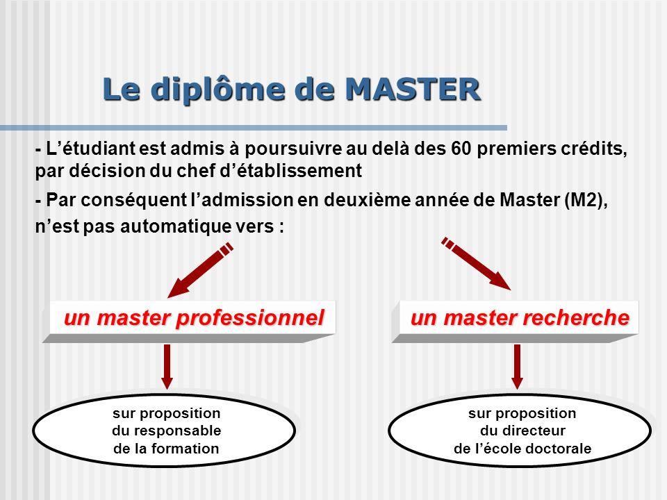 un master professionnel