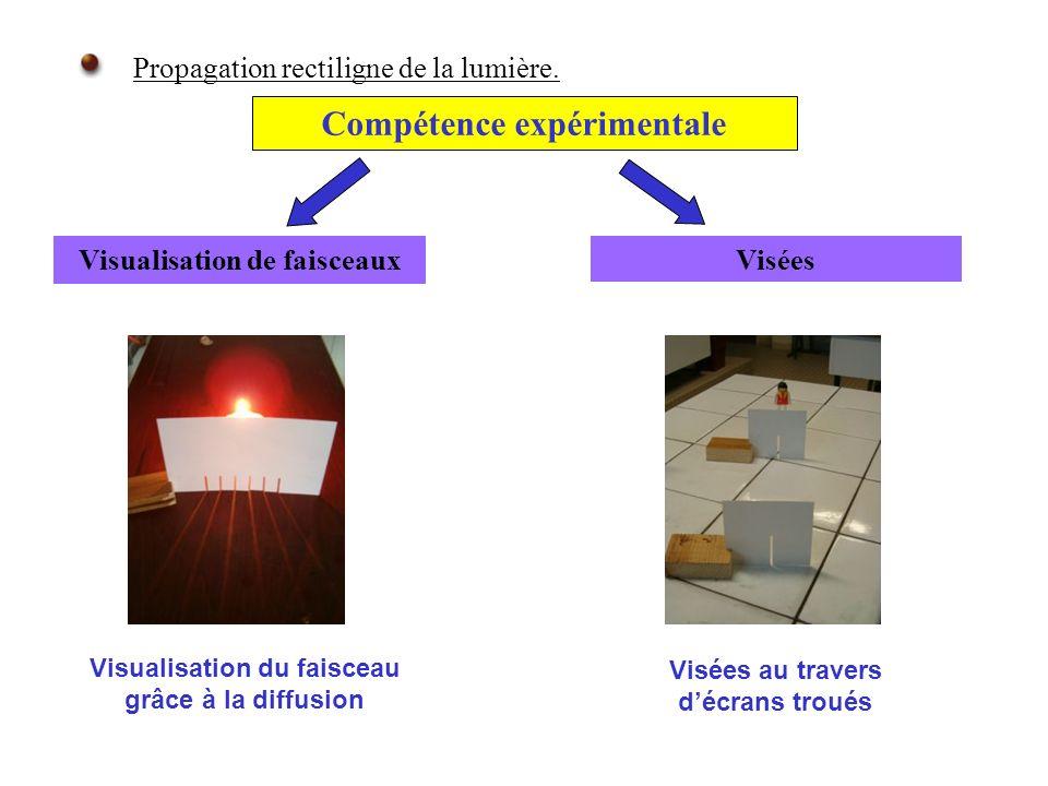 Compétence expérimentale