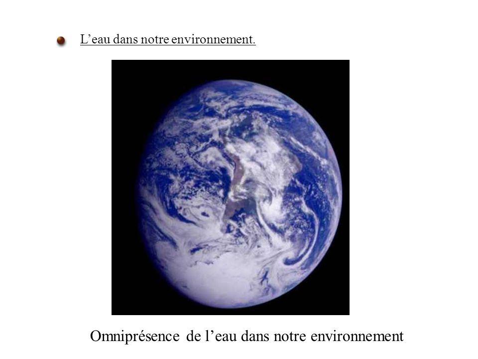 Omniprésence de l'eau dans notre environnement