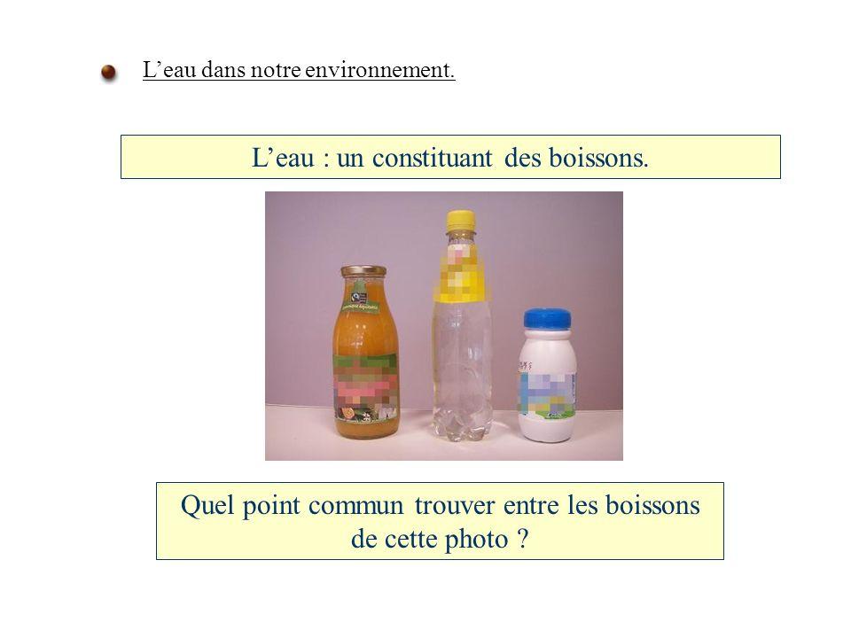 L'eau : un constituant des boissons.