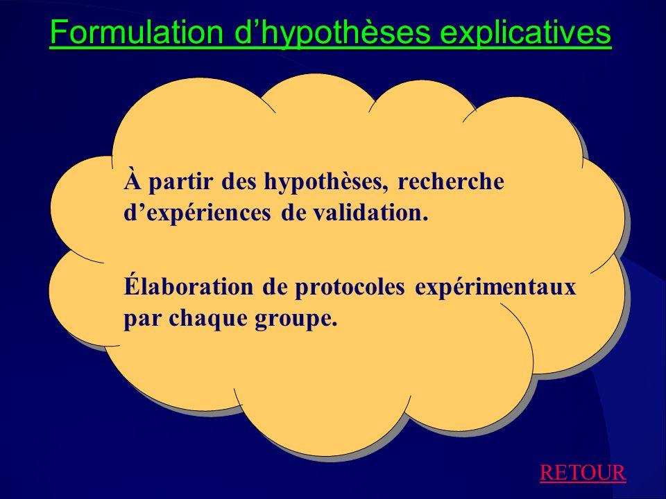 Formulation d'hypothèses explicatives