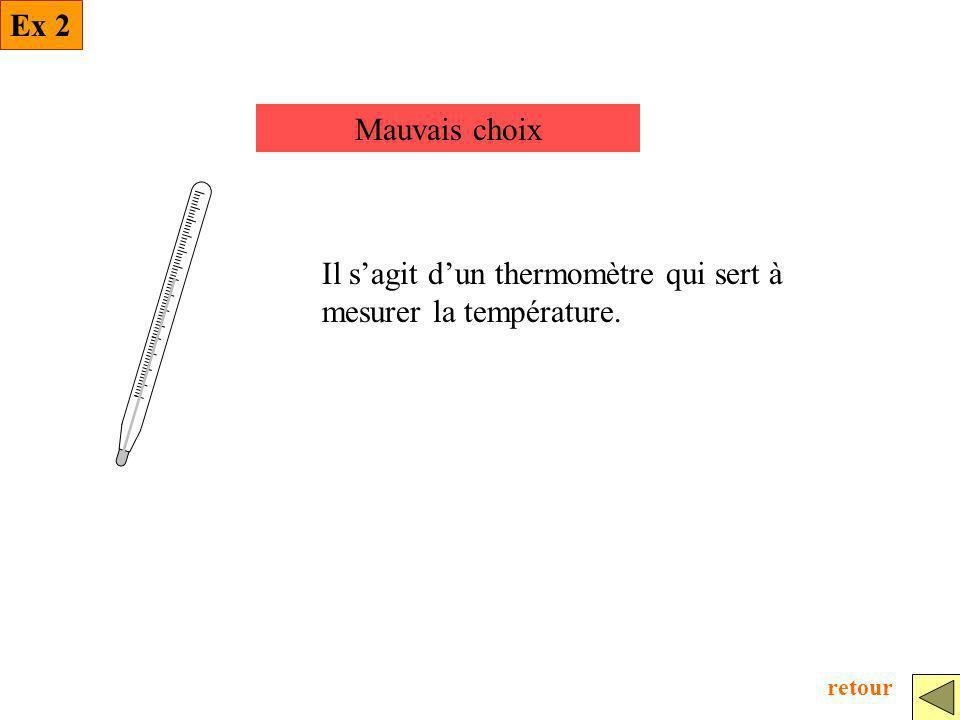 Il s'agit d'un thermomètre qui sert à mesurer la température.