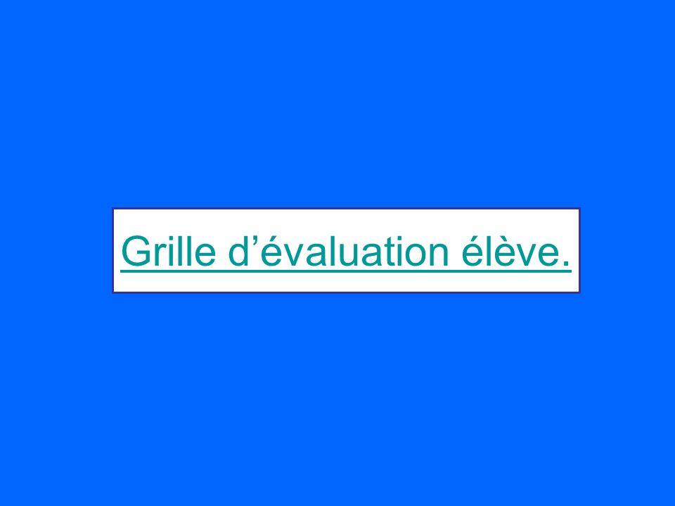 Grille d'évaluation élève.
