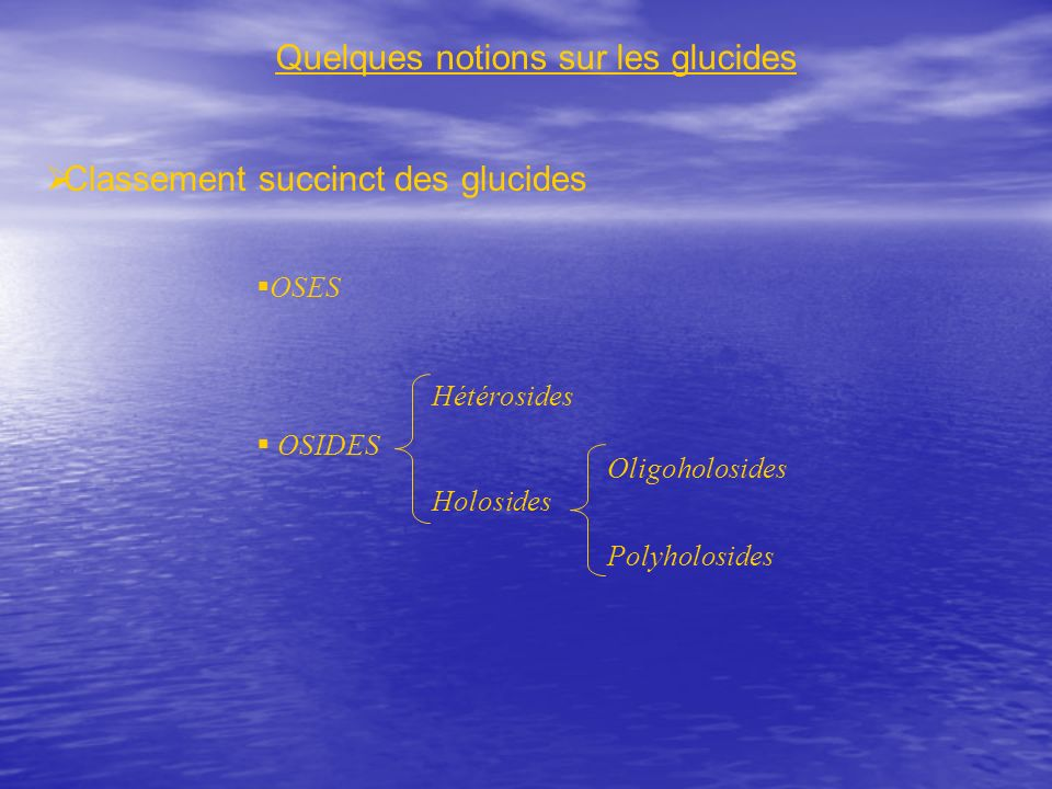 Quelques notions sur les glucides