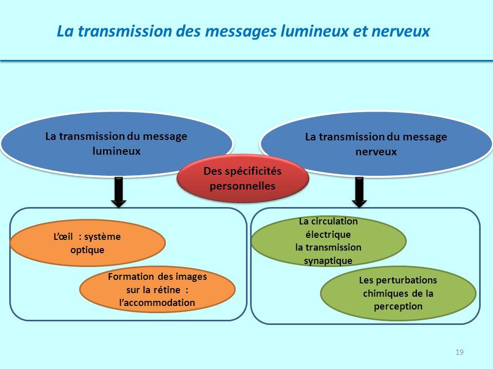 La transmission des messages lumineux et nerveux