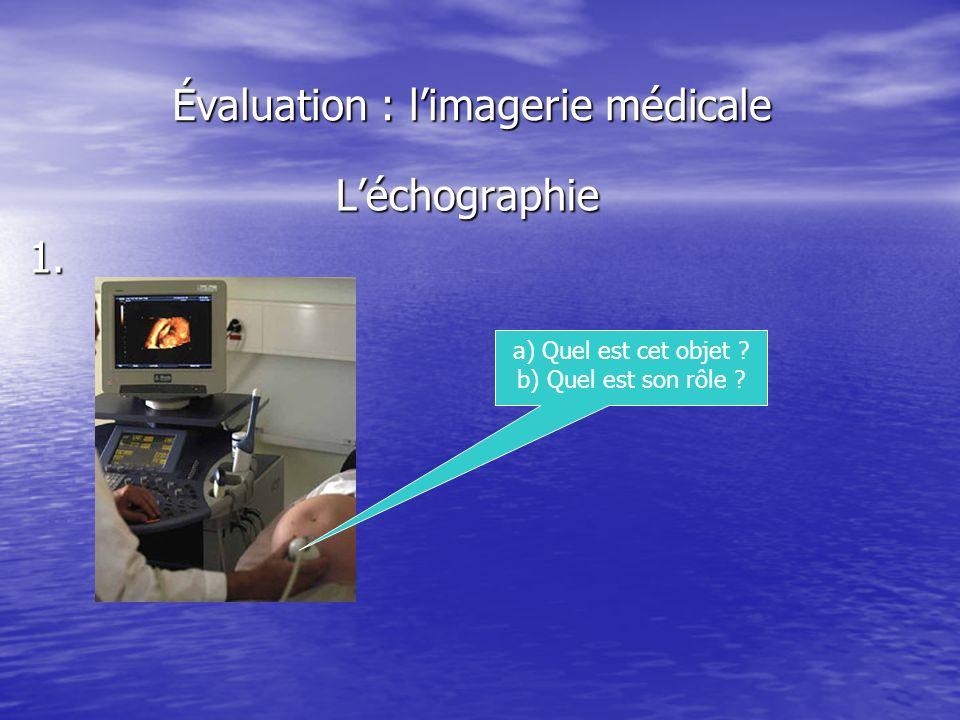 Évaluation : l'imagerie médicale