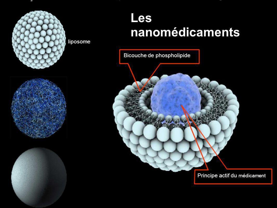Les nanomédicaments liposome Bicouche de phospholipide