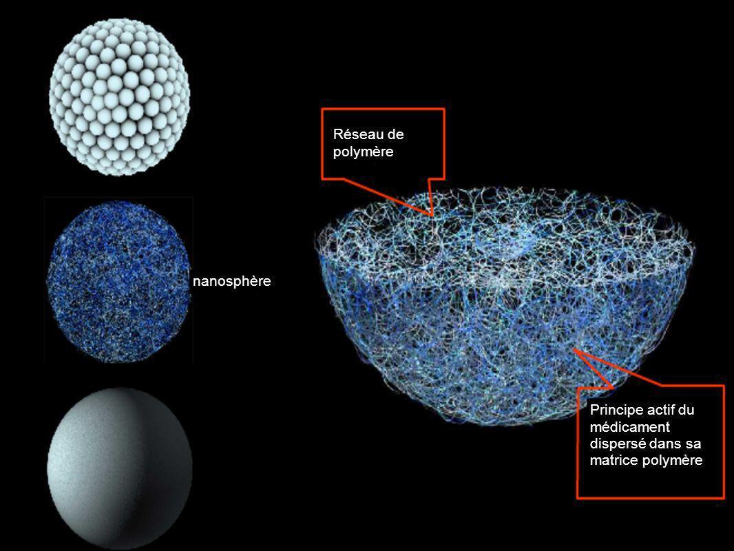 Réseau de polymère nanosphère Principe actif du médicament dispersé dans sa matrice polymère