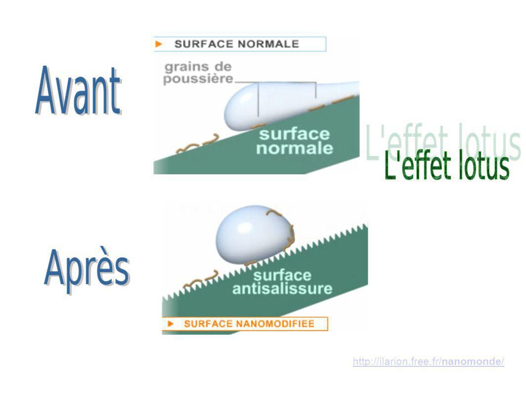 http://ilarion.free.fr/nanomonde/