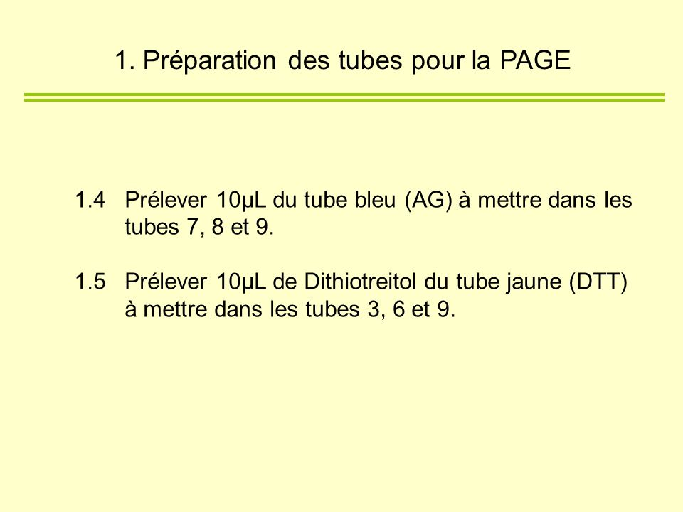 1. Préparation des tubes pour la PAGE