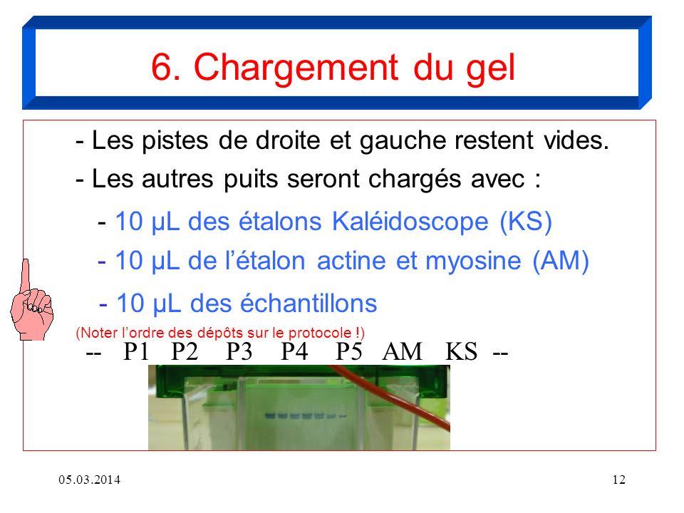 6. Chargement du gel - 10 µL des étalons Kaléidoscope (KS)