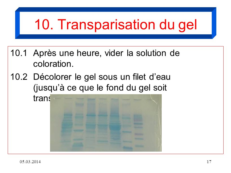 10. Transparisation du gel