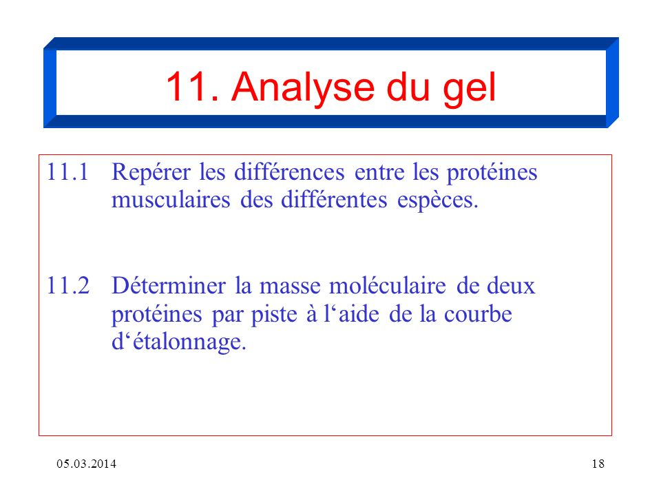 11. Analyse du gel11.1 Repérer les différences entre les protéines musculaires des différentes espèces.