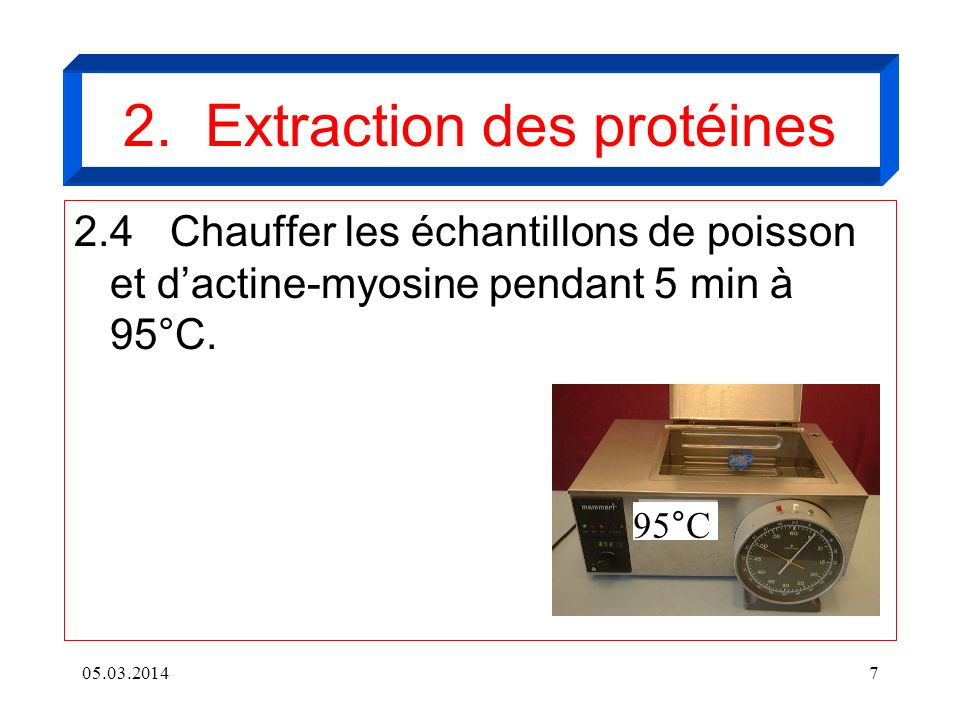 2. Extraction des protéines