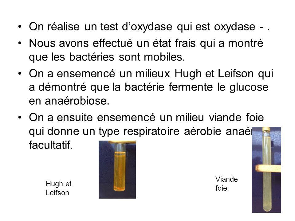 On réalise un test d'oxydase qui est oxydase - .