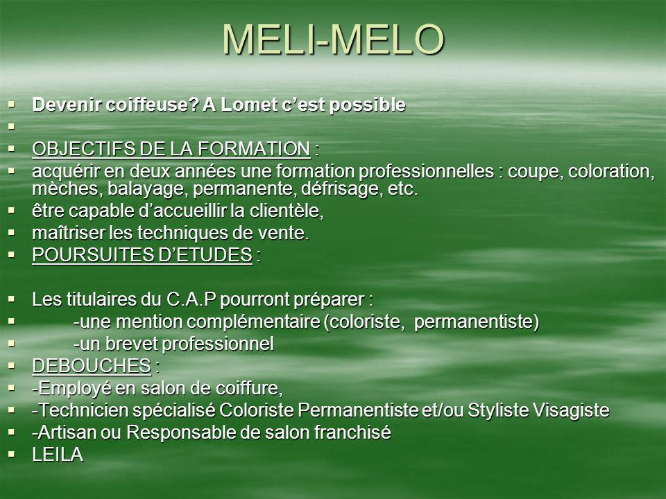 MELI-MELO Devenir coiffeuse A Lomet c'est possible