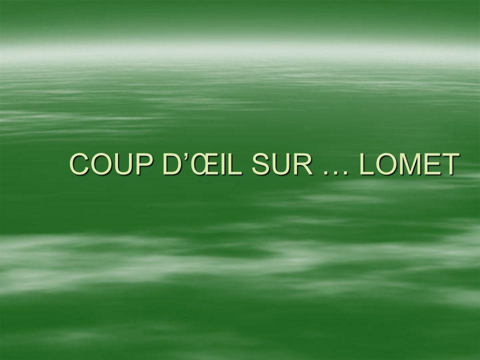 COUP D'ŒIL SUR … LOMET