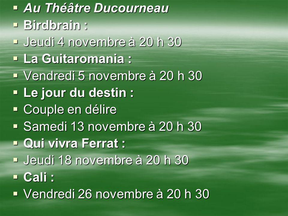 Au Théâtre Ducourneau Birdbrain : Jeudi 4 novembre à 20 h 30. La Guitaromania : Vendredi 5 novembre à 20 h 30.