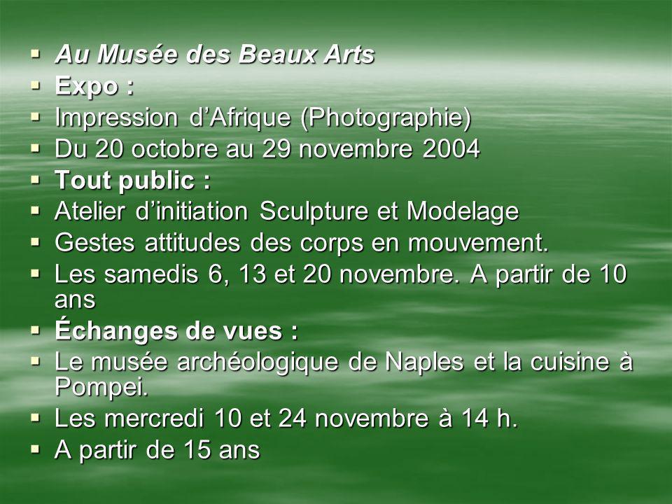 Au Musée des Beaux Arts Expo : Impression d'Afrique (Photographie) Du 20 octobre au 29 novembre 2004.