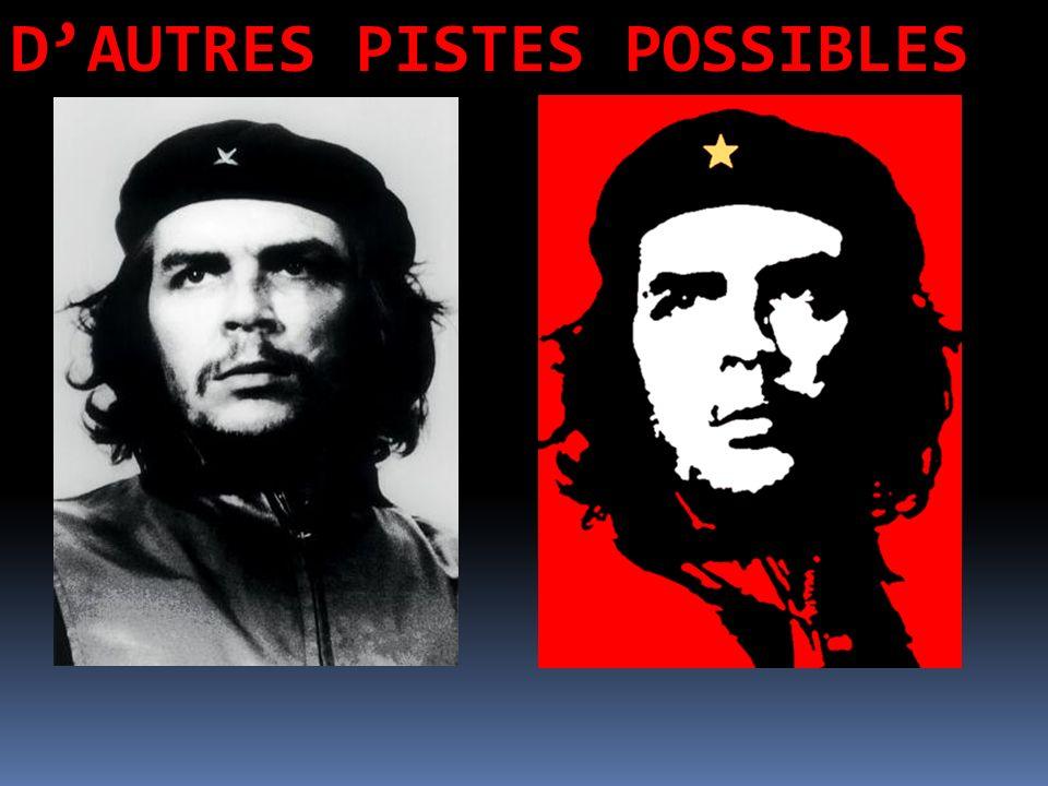 D'AUTRES PISTES POSSIBLES