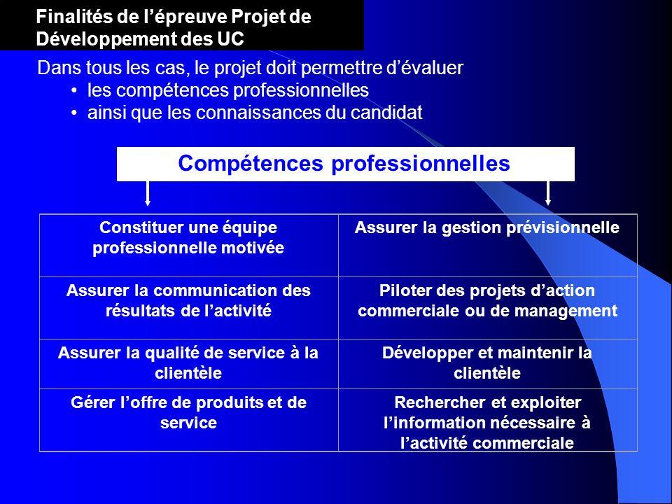 Compétences professionnelles