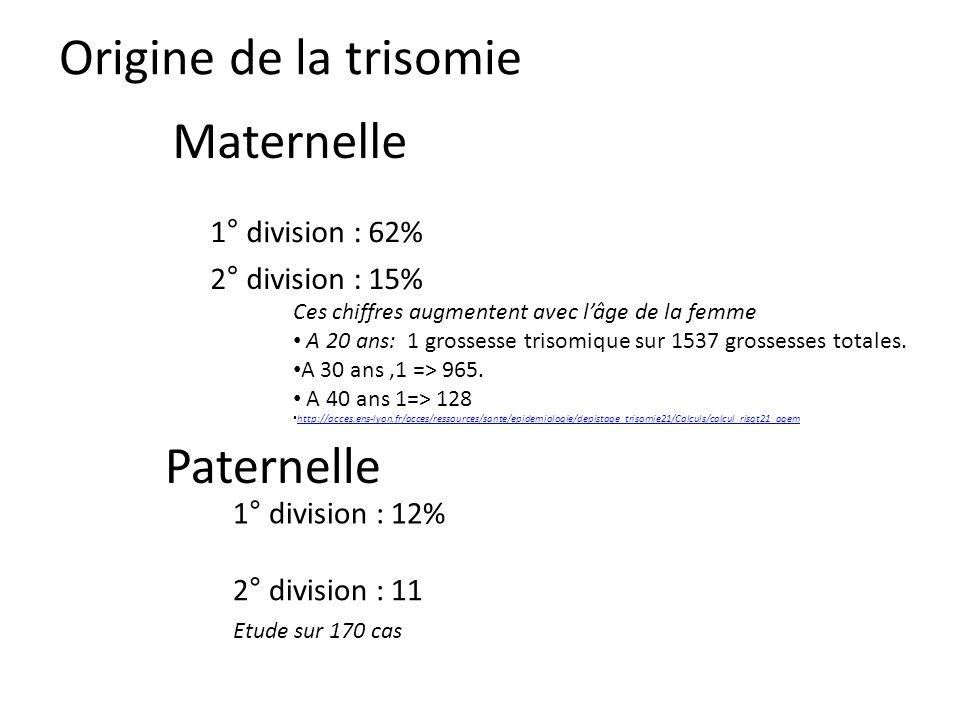 Origine de la trisomie Maternelle Paternelle 1° division : 62%