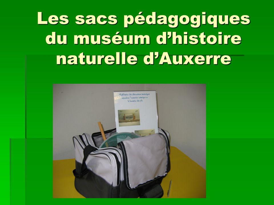 Les sacs pédagogiques du muséum d'histoire naturelle d'Auxerre