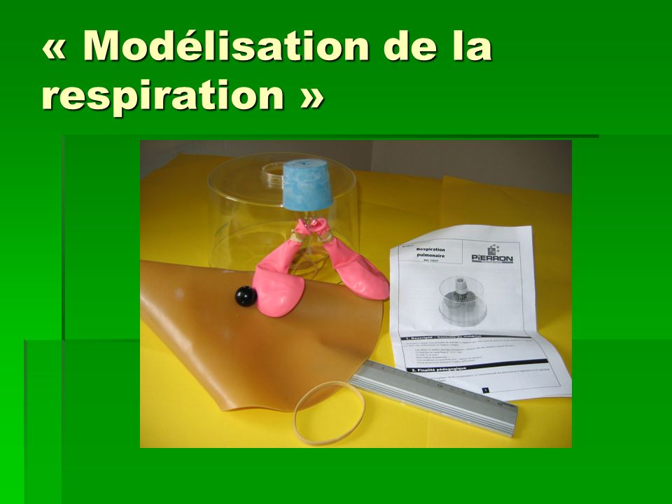 « Modélisation de la respiration »