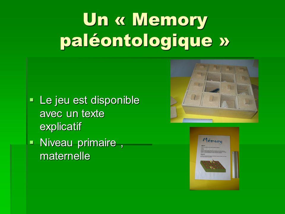 Un « Memory paléontologique »