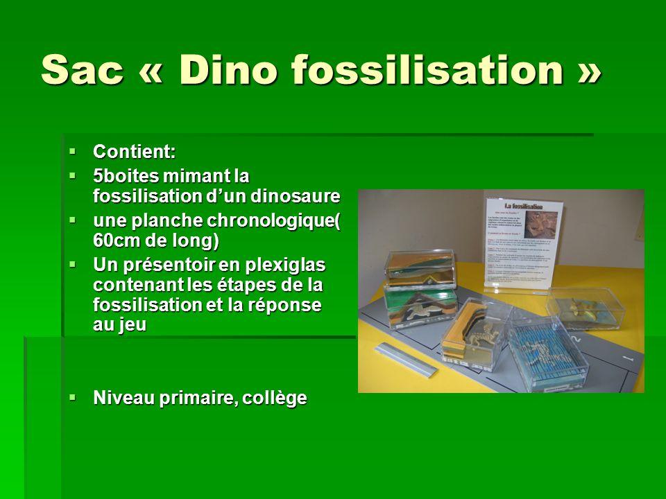 Sac « Dino fossilisation »