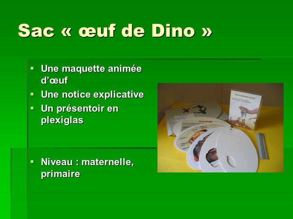 Sac « œuf de Dino » Une maquette animée d'œuf Une notice explicative