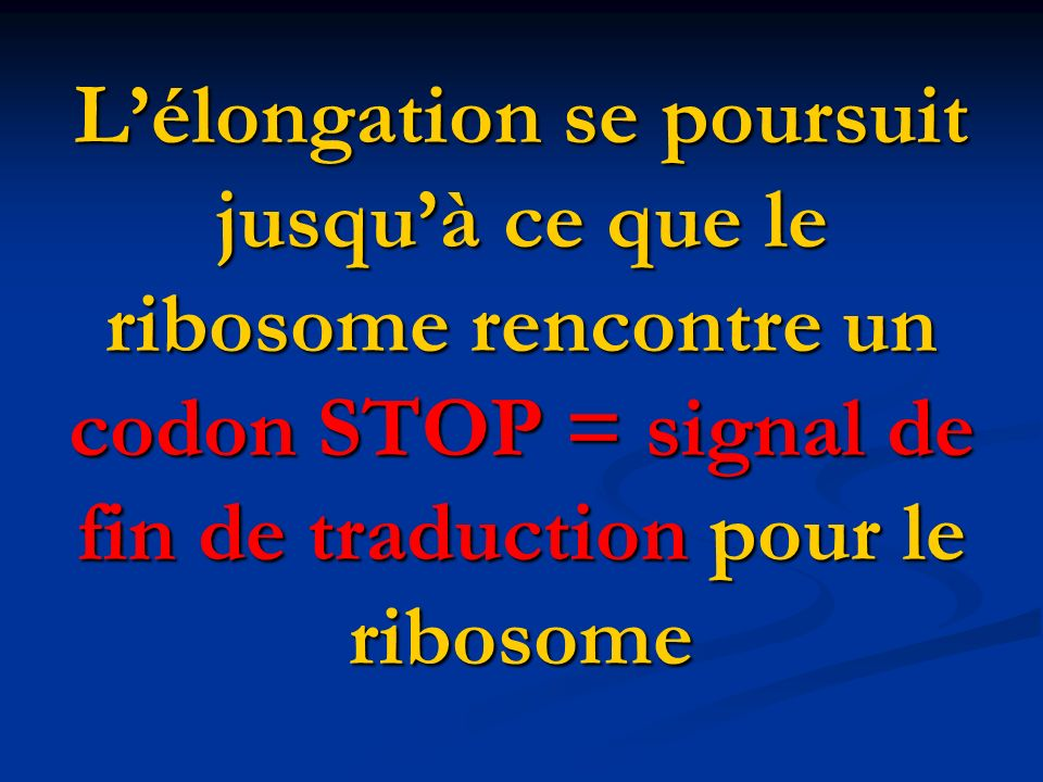 L'élongation se poursuit jusqu'à ce que le ribosome rencontre un codon STOP = signal de fin de traduction pour le ribosome
