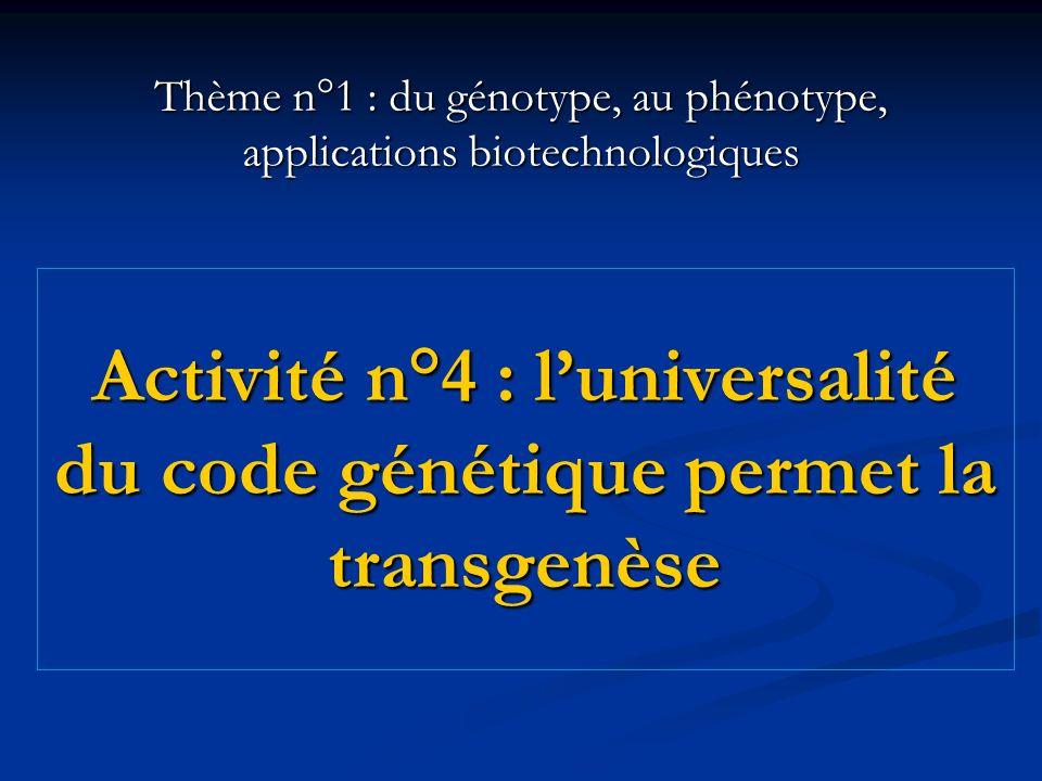 Activité n°4 : l'universalité du code génétique permet la transgenèse