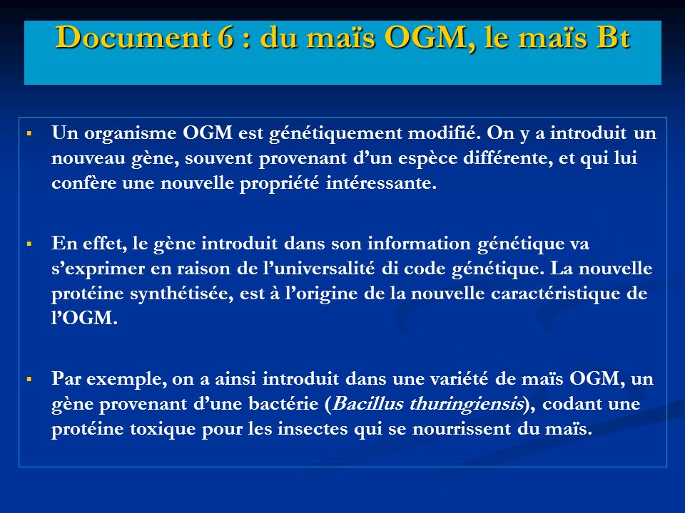 Document 6 : du maïs OGM, le maïs Bt