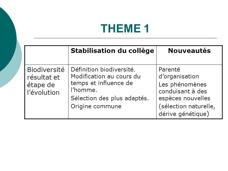 THEME 1 Stabilisation du collège Nouveautés