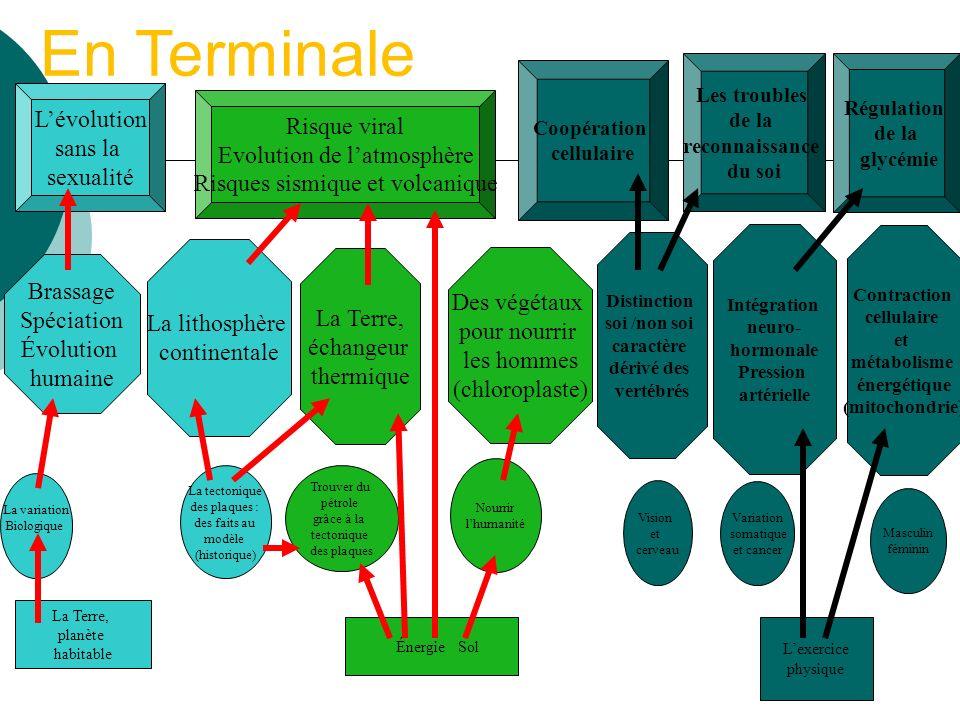 En Terminale L'évolution Risque viral sans la