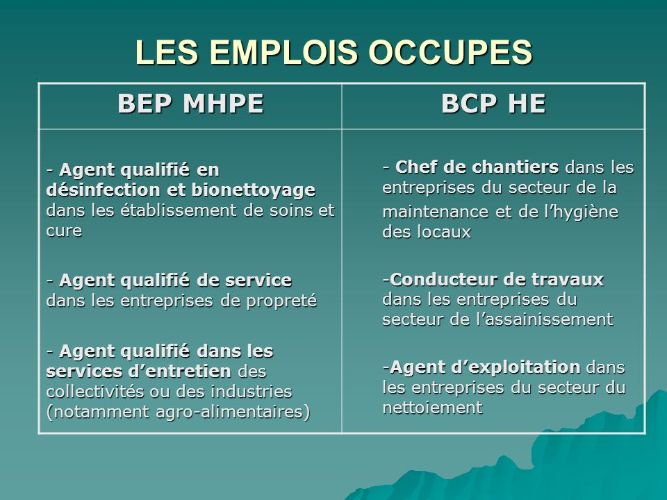 LES EMPLOIS OCCUPES BEP MHPE BCP HE