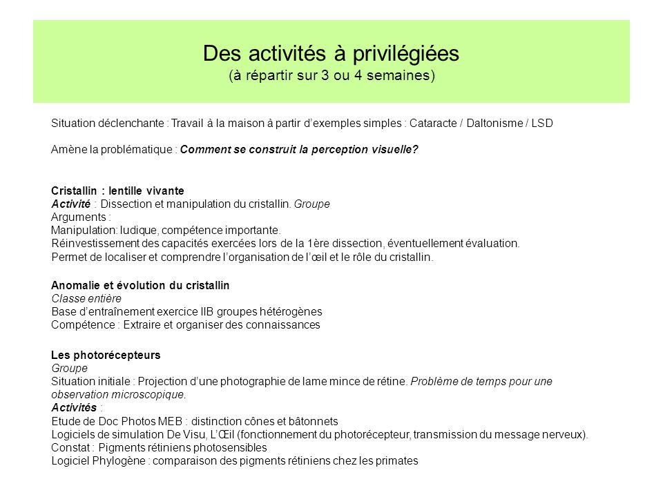 Des activités à privilégiées