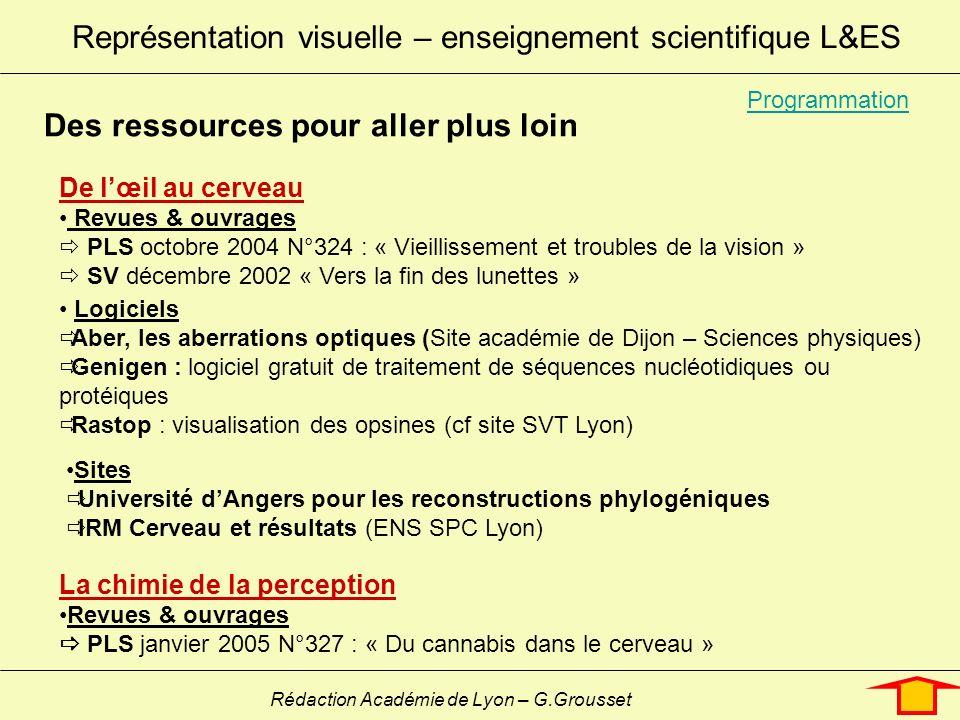 Représentation visuelle – enseignement scientifique L&ES