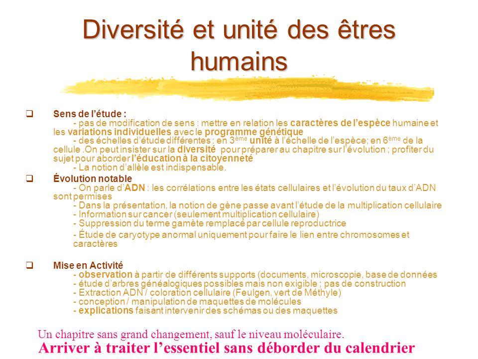 Diversité et unité des êtres humains