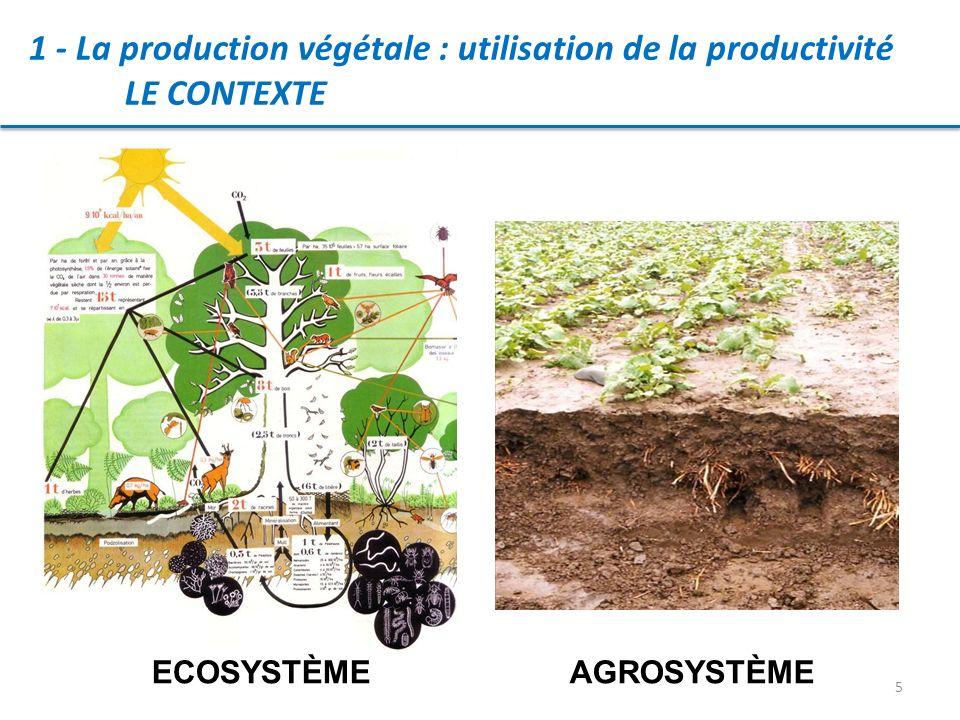 1 - La production végétale : utilisation de la productivité